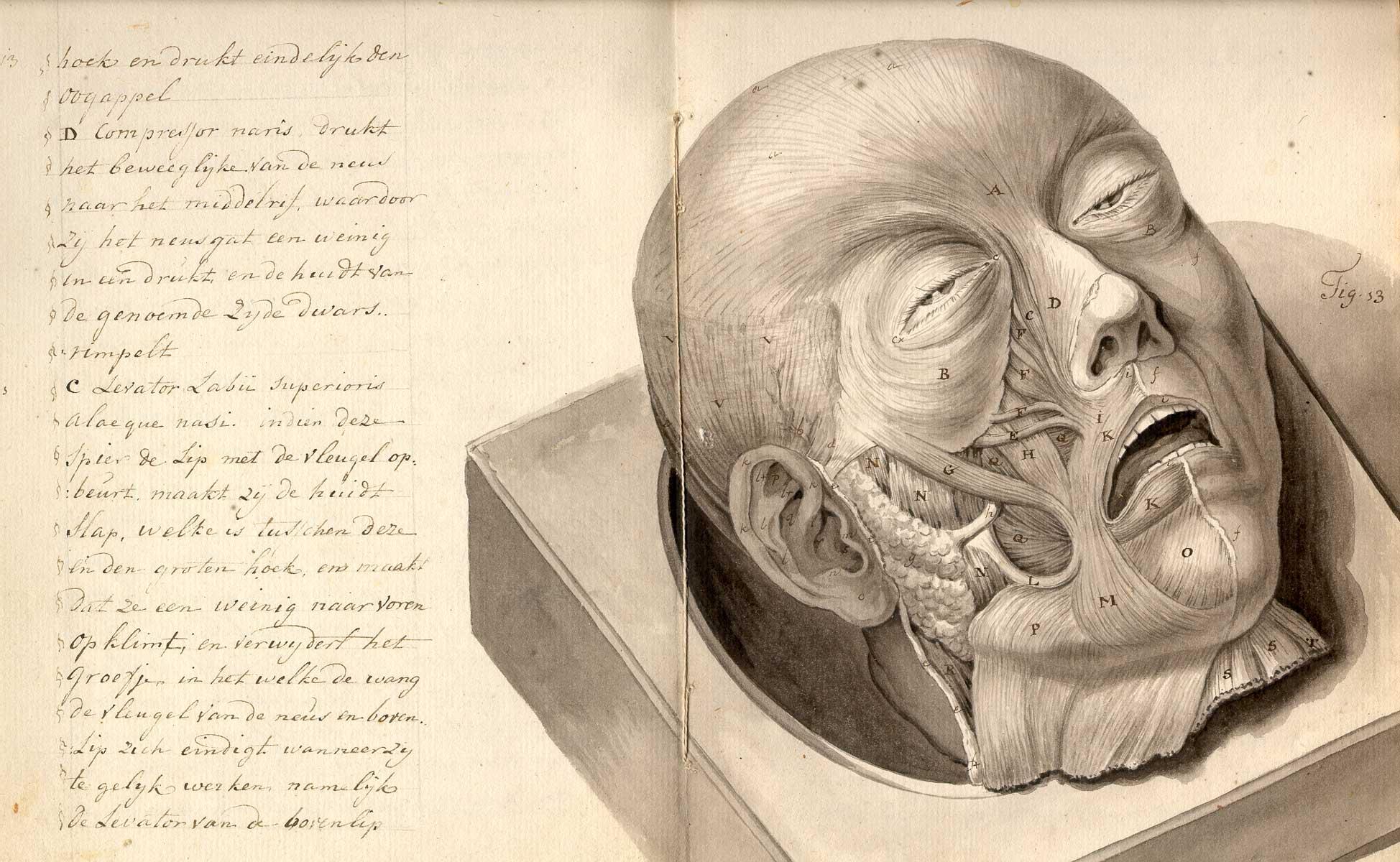 IN CASE OF DEATH - Fitzcarraldo Editions
