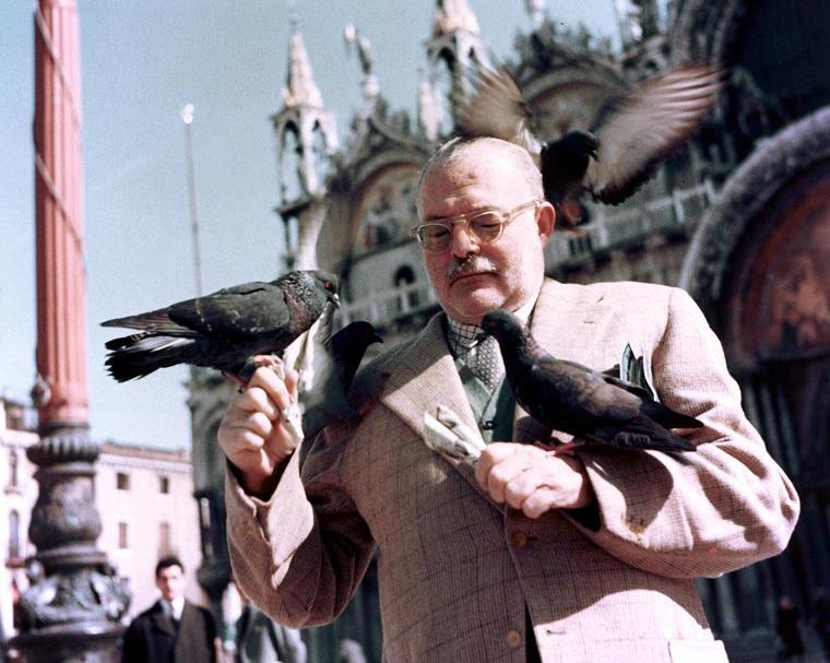 hemingway-italy-pigeons